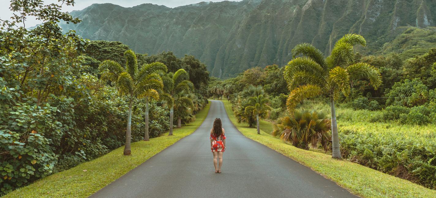 Minhas férias no Havaí